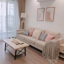 Sofa chung cư decor đơn giản đẹp SFGD12